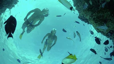 Ocean Swimming Safety Tips