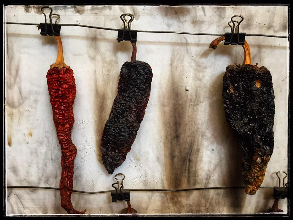Taking the Mystery Out of Dried Chiles
