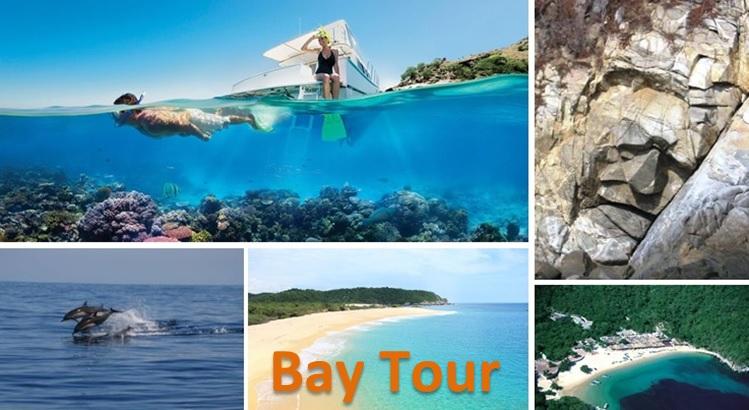 Bay Tour Page