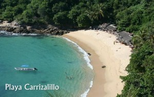 Playa-Carrizalillo-300x189