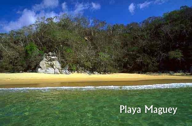 Playa Maguey