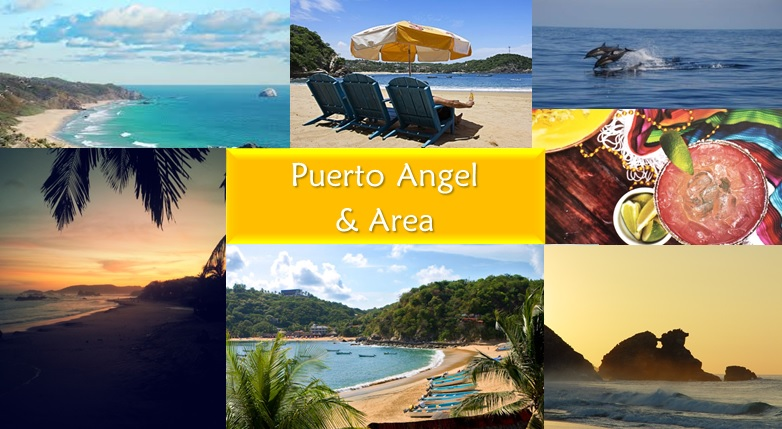 Puerto Angel and Area Banner