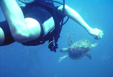 Scuba Diving in Mexico