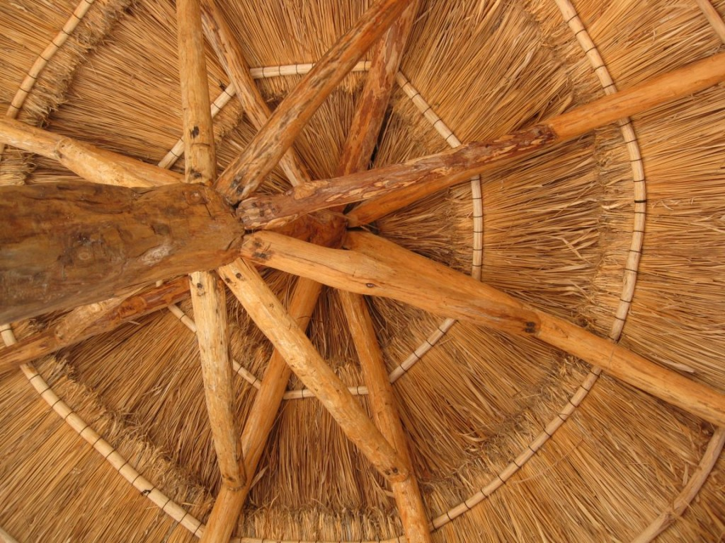 The Art of the Palapa